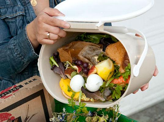 comida en la basura