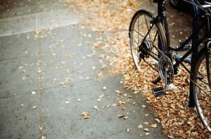 bici-blog.fossil1-300x198