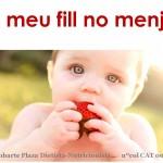 Charla: Alimentación infantil. Guía para niños de 0 a 3 años. EL MEU FILL NO MENJA