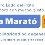 La Marató de TV3 «La solidaridad no degenera»